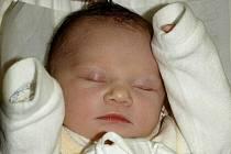 JOHANKA ČERVINKOVÁ přišla na svět 7. listopu 2010 v 15:24 hodin s mírami 3000g a 48cm. Domov má s rodiči Ladou a Tomášem Červinkovými v Novém Městě nad Metují.