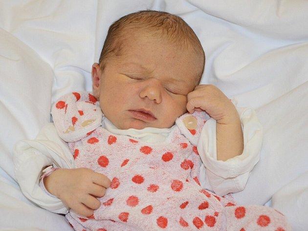 VIKTORIE ZANDALOVÁ se narodila 27. listopadu 2012 ve 13:49 hodin s váhou 3370 g a délkou 49 cm. S rodiči Hanou a Jaroslavem, a se sestřičkami Anežkou (6 let) a Eliškou (necelé 3 roky), bydlí v obci Vysokov.