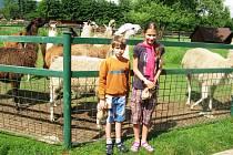 Sobota 26. června se stala pro farmu Wenet v Broumově příležitostí, jak pomoci Zoologické zahradě v Hodoníně, která byla postižena tornádem.