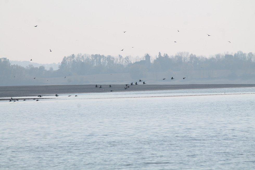 """Na dělící hrázi, která rozděluje Rozkoš na velkou a malou část, je dobře vidět, že hladina nádrže je zhruba pět metrů pod normálním stavem. Rybáři tak se svým """"nádobíčkem"""" sedávají tam, kde by jindy měli nad hlavou několik metrů vody."""