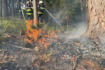 Tři jednotky hasičů likvidovaly v pondělí krátce po 17. hodině požár lesní paseky v katastru části Pavlišov.