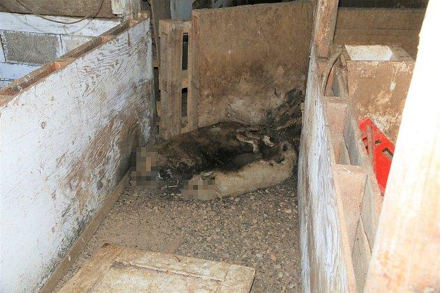 Policisté objevili více jak 70kusů uhynulých zvířat  vrůzných stádiích rozkladu.