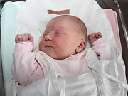 KAROLÍNA KOLÁČNÁ z Choustníkova Hradiště se narodila 7. prosince 2016 v 7.00 hodin. Vážila 3545 g a měřila 48 cm. Svým příchodem na svět potěšila rodiče Alžbětu Houdkovou a Václava Koláčného.