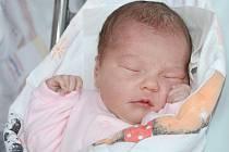 ANNA KUHNOVÁ se narodila 28. listopadu 2013 v 19:10 hodin. Po narození vážila 3180 gramů a měřila 48 centimetrů. S rodiči Simonou a Pavlem a se sestřičkou Emičkou (1,5 roku) bydlí ve Velkém Poříčí.