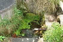 V obecní studánce, která měla být původně zrušena i ve studních se obyvatelům Semonic ztrácí voda.