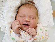 SYLVIE KOLLERTOVÁ z Náchoda je prvním děťátkem Renaty Ožďanové a Ondřeje Kollerta. Holčička se narodila 10. listopadu 2017 v 10.06 hodin, vážila 4690 gramů a měřila 52 centimetrů.