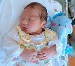 BENJAMÍN RUBEŠ z Dobrušky se narodil 12. srpna 2017 v 0.18 minut manželům Ivaně a Davidu Rubešovým. Vážil 3655 gramů a měřil 50 centimetrů. Doma brášku přivítaly sestřičky Emily (5 let) a Justýna (3 roky).