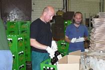 PIVO PRIMÁTOR si dlouhodobě udržuje špičkovou kvalitu. Pivo tak končí u zákazníků ve Velké Bitánii, Francii, Německu, Španělsku, Švédsku nebo i Dánsku.