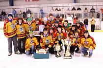 Vítězem Synergy Cupu 2008 se stalo mužstvo HC Topolčany.