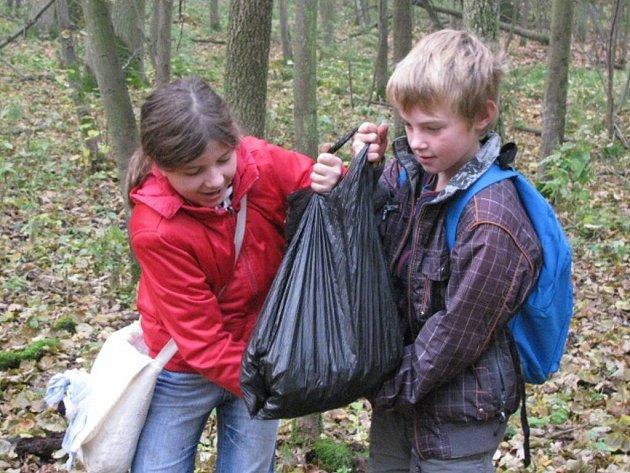 Den stromů prožila Základní škola v České Skalici. Žáci poznávali stromy v zahradě Vily Čerych, navštívili i Lesní Království.