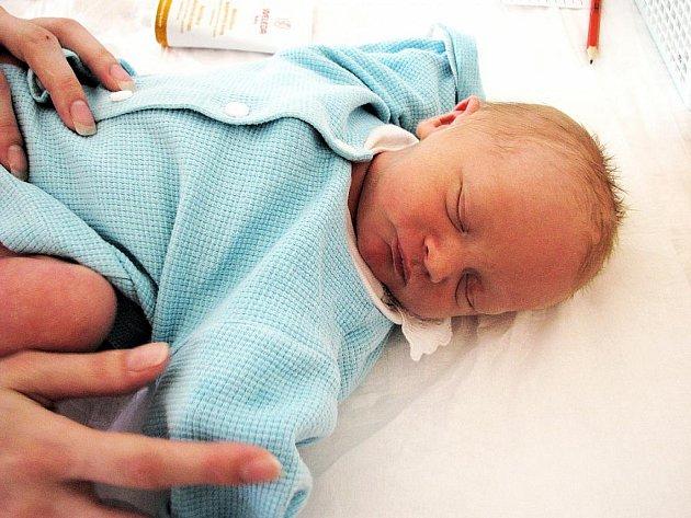 JAN DOLEK se narodil 6. dubna 2010 v 8:55 hodin. Jméno dostal po tatínkovi. Po porodu vážil 3375  gramů. S rodiči Petrou Hromádkovou a Janek Dolkem bydlí v Opočně.