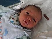 JAN HANUŠ je prvním miminkem Denisy Vavřenové a Jana Hanuše z Teplic nad Metují. Chlapeček spatřil světlo světa 3. ledna 2017. Váha ukázala, že má 3755 gramů a metr naměřil 52 centimetrů.