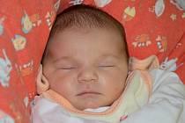DOROTA KALENSKÁ se narodila 10. listopadu 2013 ve 12:54 hodin s váhou 3460 gramů a délkou 49 centimetrů. S maminkou Miriam a s tatínkem Janem bydlí v Dobrušce.