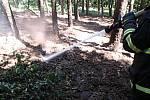 V Malé Skalici hořela lesní hrabanka na ploše asi 10 krát 20 metrů.