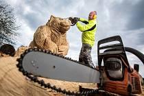 Na křižovatku budou dohlížet medvědi
