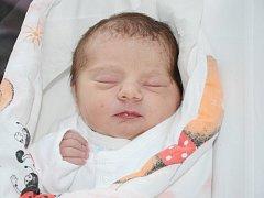 ANETA ŠEVCŮ se narodila 18. dubna 2013 ve 23:50 hodin s váhou 2740 gramů a délkou 47 centimetrů. S rodiči Lenkou a Pavlem, a s dvouletou sestřičkou Gábinkou, mají domov ve Velkém Poříčí.