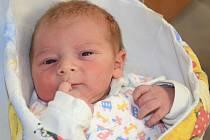 MIKULÁŠ NOSEK se narodil 12. září 2013 v 11:17 hodin. Chlapeček vážil 3650 gramů a měřil 50 centimetrů. Společně s rodiči Klárou a Ondřejem a se sestřičkou Viktorkou (2,5 roku) mají domov v Červeném Kostelci.