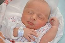 ELIŠKA HÖNIGOVÁ se narodila 1. dubna 2014 v 10:10 hodin s váhou 3660 gramů. S rodiči Ivonou a Zbyňkem mají domov ve Velkých Svatoňovicích.