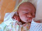 VÍTEK ŘEHÁK potěšil svým příchodem na svět rodiče Moniku a Lukáše z Nového Města nad Metují. Chlapeček se narodil 20. února 2018 v 6,41 hodin, vážil 3150 gramů a měřil 50 centimetrů. Doma má sestřičky Adélku (6 let) a Terezku ( 1,5 roku).