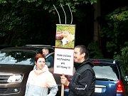 Chovatelé nechtějí chovt své ovce pro vlky.