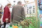 Častolovická výstava láká na úrodu budoucnosti.