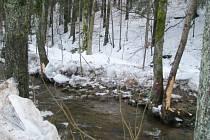 BŘEHY ŘEKY ZDOBNICE od stejnojmenné horské obce dál po proudu jsou lemovány stromy, které poškodily plovoucí masy ledu. Ty se v korytě utvořily při dlouhodobých tuhých mrazech a následná obleva je vypustila k neřízené plavbě