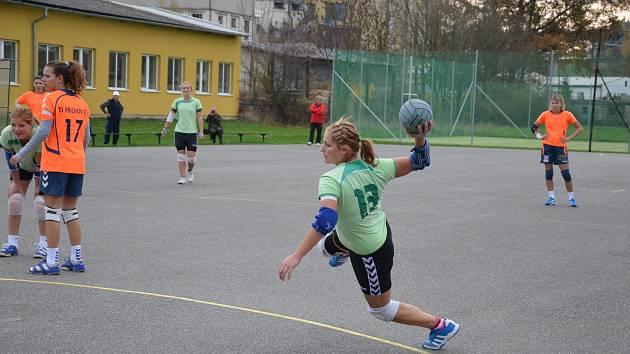 ŠESTNÁCT GÓLŮ vstřelila v závěrečném podzimním utkání s Příchovicemi dobrušská házenkářka Petra Laštovičková.