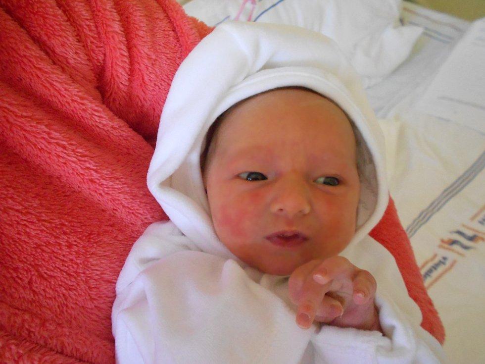 Natálie přišla na svět 16. listopadu 2018 v 5.43 s váhou 2 650 g a délkou 48 cm. Radují se z ní rodiče Denisa a Martin z Týniště nad Orlicí. Tatínek byl u porodu velkou oporou.