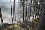 U lesního požáru u Olešnice v Orlických horách zasahovali čeští i polští hasiči.