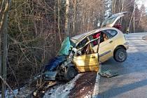 Auto narazilo do stromu. Zraněného odvezla sanita.