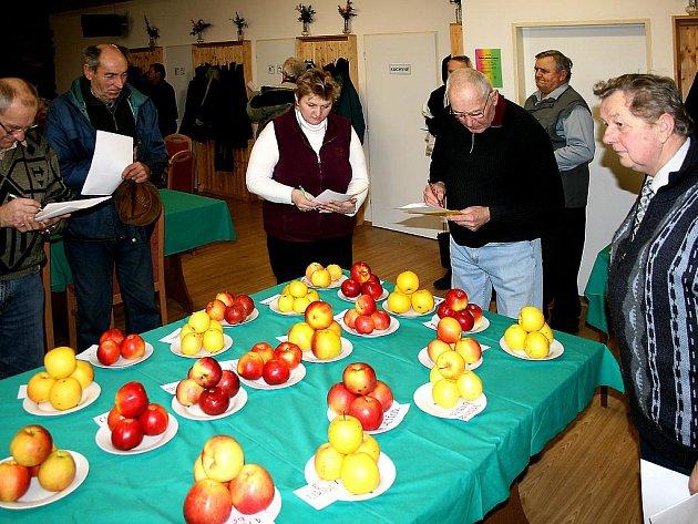 NEJEN VZHLED ČI CHUŤ, ale i tvrdost slupky hrají při hodnocení jablek roli. Kvalitní odrůda se tak na první pohled nemusí poznat