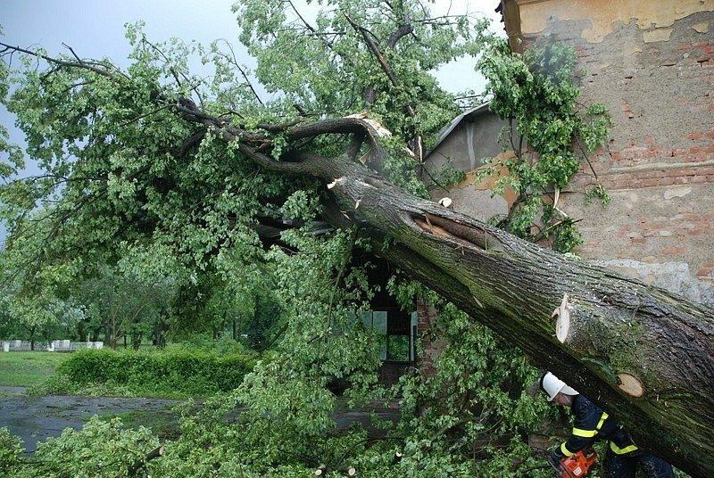 Větrná smršť: v Černíkovicích na Rychnovsku spadl strom na rodinný dům.