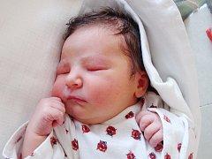 MICHAELA FRUMAROVÁ je první  radostí pro Elišku Brunovskou a Daniela Frumara z Týniště nad Orlicí. Svět uviděla 14. listopadu ve 12.30 hodin, kdy vážila 3,5 kg a měřila 50 cm. Tatínek byl u porodu a zvládl to výborně.