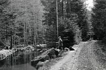 Když si obyvatelé Rychnova nad Kněžnou chtějí udělat pěkný výlet, většina z nich se vypraví zhruba tři kilometry za město do přírodního parku Lesa Včelného. Oblíbeným turistickým cílem je toto místo již od dob největší slávy místních lázní, a to je už dob