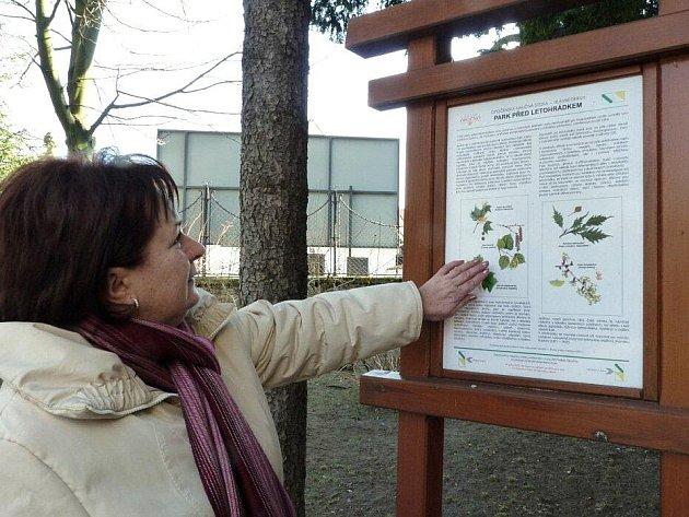 Opočenský park