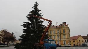 Kupkovo náměstí už má svůj vánoční strom
