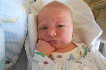 Štěpán z Třebechovic pod Orebem přišel na svět 17. srpna 2020 v 17:26 hodin a jeho míry byly 3 470 g a 49 cm. Radují se z něho maminka Sandra i osmiletá sestřička Natálka. U porodu byla kamarádka a byla velkou oporou.