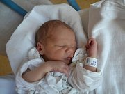 JIŘÍ HLOUŠEK se narodil 29. května ve 2:43. Z prvního syna  se těší maminka Michaela a tatínek Jiří Hlouškovi z Častolovic. Chlapeček vážil 2940 gramů a měřil 49 cm. Doma se na bratříčka těší starší sestra Michaela.