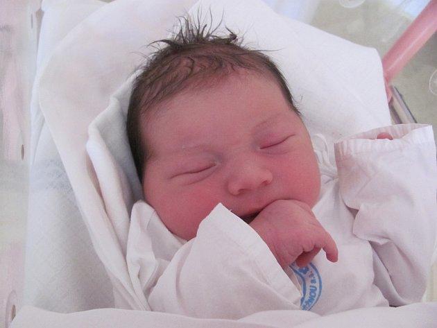 EMMA POLICKÁ: Rodiče Michaela a Jan Polický z Deštného v Orl. horách  mají od 11. listopadu od 4.53 hodin radost z dcery. Po narození vážila 4 kilogramy a měřila 53 centimetrů. Tatínek byl u porodu nejlepší. Doma se těší sestřička Anna.