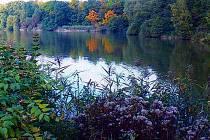 Sdružení  Velešov  v současné době  hospodaří  na 1 245 hektarech  polí, luk a lesů.