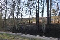 Hasiči na požár paseky použili i vodu z koupaliště.