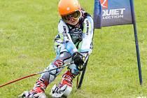 V PLNÉ RYCHLOSTI. Mladší žákyně Eliška Rejchrtová z Českého Meziříčí na trati obřího slalomu.