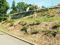 Králíkův kopec v Doudlebách po úpravě
