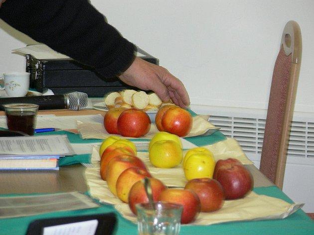 Čtyřiačtyřicet degustátorů hodnotilo jádroviny v Domě zahrádkářů v Častolovicích.