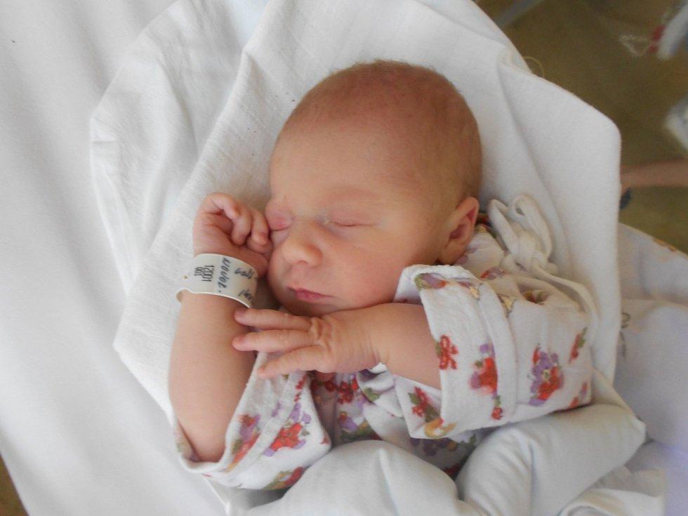 Julie Lukavská se narodila manželům Martině a Michalovi Lukavským z Rychnova nad Kněžnou 15. května 2019 v 15.01 hodin. Vážila 3 210 g a měřila 49 cm. Tatínek byl mamince u porodu velikou podporou.