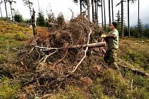Dobrovolníci uklízeli v Královéhradeckém a Pardubickém kraji.