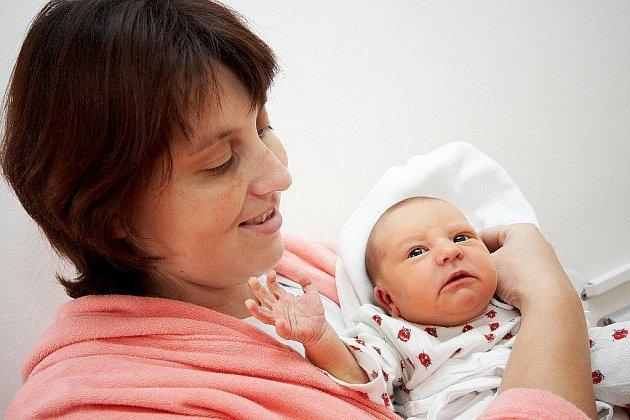 Bild vergrößern KLÁRA: Rodiče Eva a Antonín Novotní z Podbřezí se radují z narození dcery Klárky. Ta přišla na svět 5. 10. ve 4.35 hodin (3,3 kg a 50 cm). Rodiče dopředu netušili, že se jim narodí holčička. Tatínek byl u porodu a vše zvládl dobře.