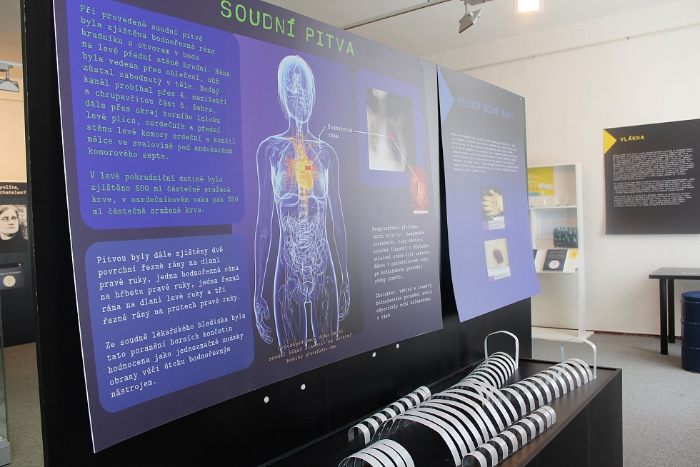 Z nových výstav muzea