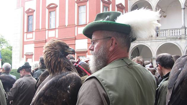 Ze setkání sokolníků v Opočně.