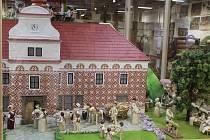 Přírodopisné muzeum láká do nových expozic.